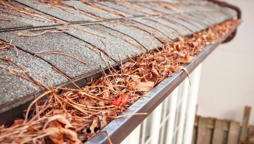 Eavestrough clogged with leaves and debris